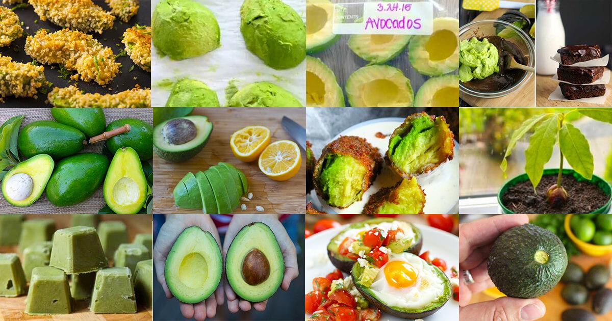 13 Tricks Die Jeder Avocado Fan Kennen Sollte Pottsalatde